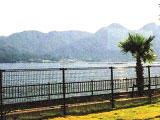 名勝・宮島を臨む