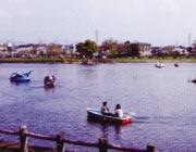 江津湖(熊本市)
