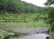 周南緑地公園