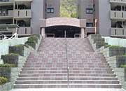 エントランスへの階段