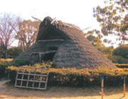 竪穴式住居(大中遺跡公園)