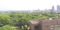 マンション周囲の風景