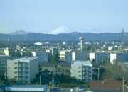 屋上から富士を望む