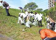 堤防除草作業