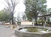 九頭竜公園