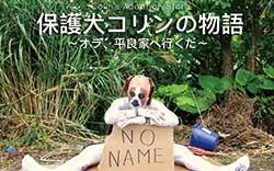 替え歌で動物愛護を呼びかける動画を配信する YouTube「沖縄ハッピーテイルズ」