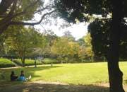 浜松城公園「芝生広場とお城」