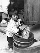 厨(くりや)の前で。祖父の釣った魚