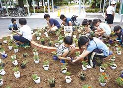 地域の高齢者と小学生が協働して学校花壇に花を植える