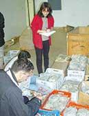 2002年、アレッポ博物館にて。学生と遺物整理