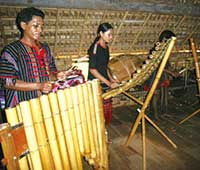 2005年、タイグエン地方の少数民族の演奏