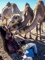エジプトの砂漠で1人で移動生活を送る女性サイーダ