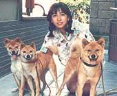 ソロデビュー時、岡崎の自宅にて愛犬3匹と。左からベア(オス)、レイ(メス)、ジュン(母親)