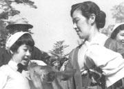 奈良春日神社で鹿と遊ぶ(右は母)