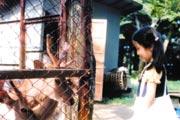 小学生のとき。北海道にて (提供 宇宙航空研究開発機構(JAXA))