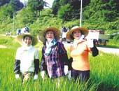 「3人娘」揃って、米作りで新潟県山古志村復興のお手伝いを。左から伊東さん、中尾さん、園さん