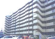 サーパス西津田Ⅱ(島根県松江市)