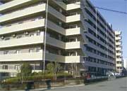 セレナハイム立川一番町(東京都立川市)