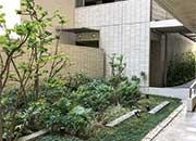都会のオアシス、中庭